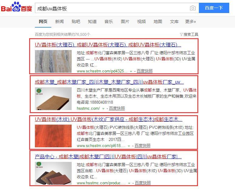 成都网站推广案例1.jpg